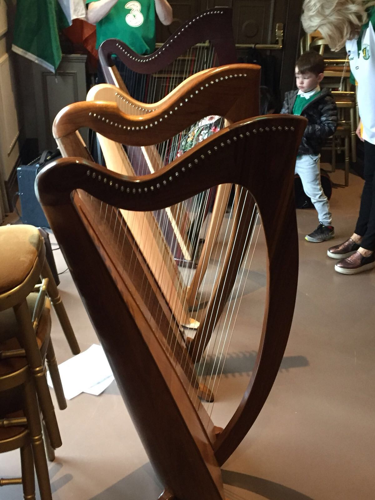Harp School – School of Traditional Irish Music